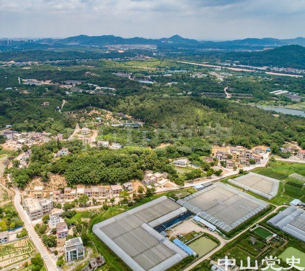 43-3图中山上左边为树坑村,山边与大棚间为合里新村 黄春华摄(2020年5月).jpg